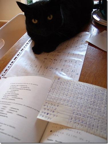 Кіт, що вчить хіраґану