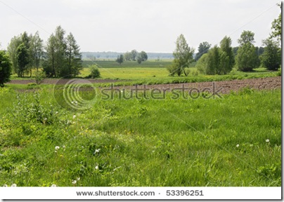 Сільська місцевість в Україні - фотобанк Shutterstock