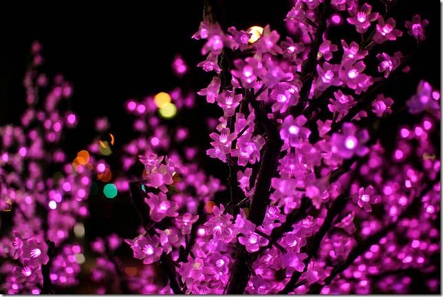 Квіткові вогні - Pulen-blog