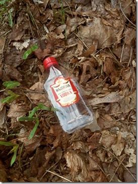 Vodka bottle  - Pulen.info
