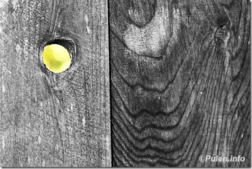 A hole in the wooden fence
